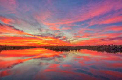 Photograph - Loxahatchee National Wildlife Refuge by Juergen Roth