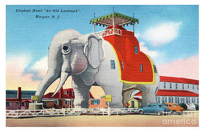 Photograph - Lucy The Elephant by Mark Miller
