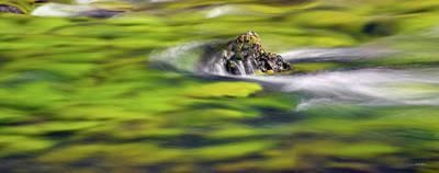 Photograph - Luminous River Panoramic 1 by Leland D Howard