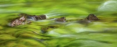 Photograph - Luminous River Panoramic 2 by Leland D Howard