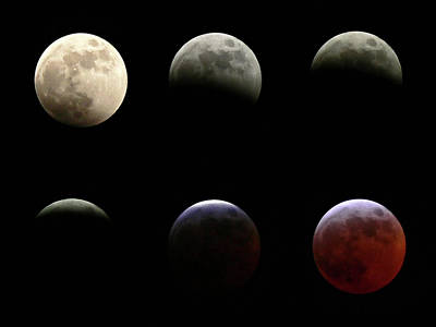 Photograph - Lunar Eclipse by Ellen Van Bodegom