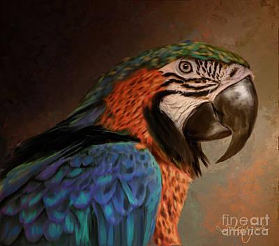 Painting - Macaw by Tara Richardson