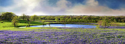 Photograph - Mach Road Blubonnet Panorama In Evening Light by Lynn Bauer