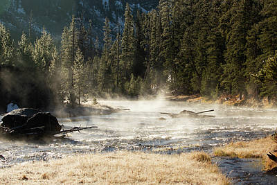 Photograph - Madison River Morning by Pete Federico