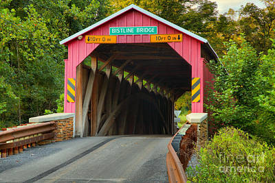 Photograph - Madison Township Bistline Covered Bridge by Adam Jewell