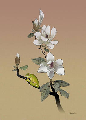 Digital Art - Magnolia And Tree Frog by M Spadecaller