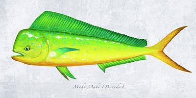 Wall Art - Painting - Mahi Mahi Portrait by Guy Crittenden