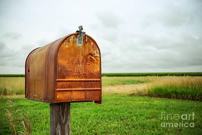 Photograph - Mailbox  by Iryna Liveoak