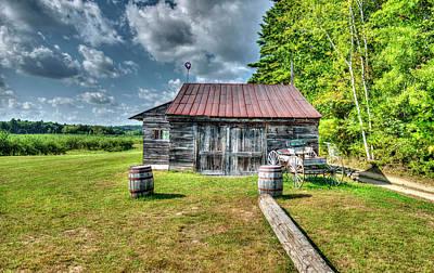 Photograph - Maine Apple Orchard by Bob Doucette