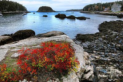 Photograph - Maine Coast Autumn Colors by Olivier Le Queinec