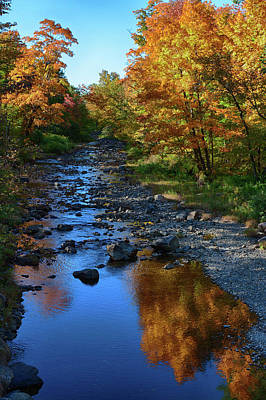 Photograph - Maine Fall Color Reflection by Jeff Folger