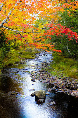 Photograph - Maine Is Calling by Karen Wiles