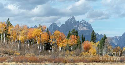 Photograph - Majestic Fall - Grand Teton  by Sandra Bronstein