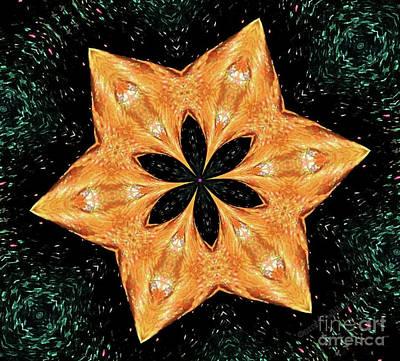 Mallard Head Mandala Art Print