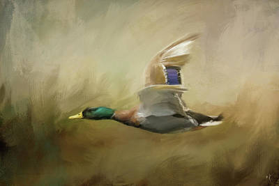 Painting - Mallard In The Marsh by Jai Johnson