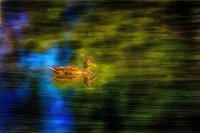 Digital Art - Mallard Reflection Paint #i4 by Leif Sohlman