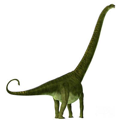 Open Impressionism California Desert - Mamenchisaurus hochuanensis Dinosaur Tail by Corey Ford