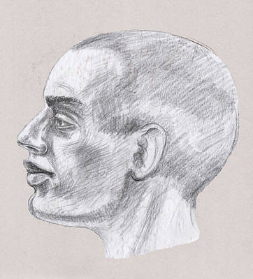 Drawing - Man Head Study Profile  by Irina Sztukowski