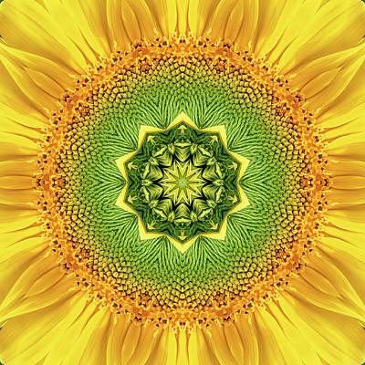 Yellow Photograph - Mandala 7 by Steve Satushek