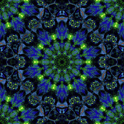 Jodi Diliberto Royalty-Free and Rights-Managed Images - Mandala on a Winters Night by Jodi DiLiberto