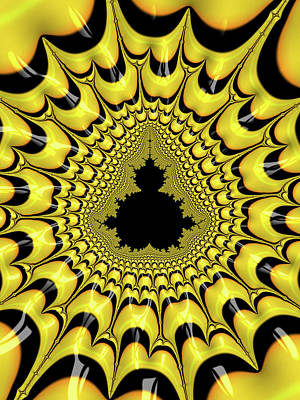 Digital Art - Mandelbrot Set Black And Yellow Fractal by Matthias Hauser