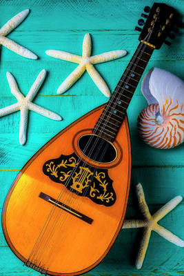 Photograph - Mandolin And White Starfish by Garry Gay
