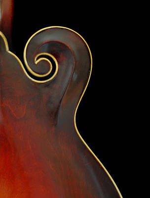 Photograph - Mandolin Detail by Perry Correll