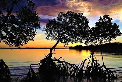 Landscape Wall Art - Photograph - Mangrove Sunset by Joan Stratton