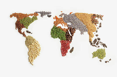 Map Of World Made Of Various Seeds Art Print by Imagemore Co, Ltd.