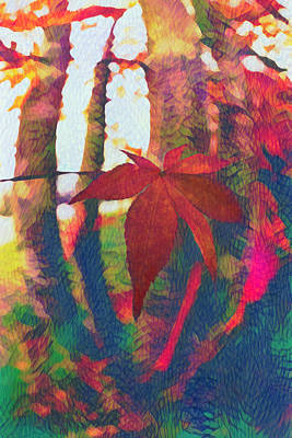 Photograph - Maple Leaf In Autumn In Abstract Vivid Colors by Debra and Dave Vanderlaan