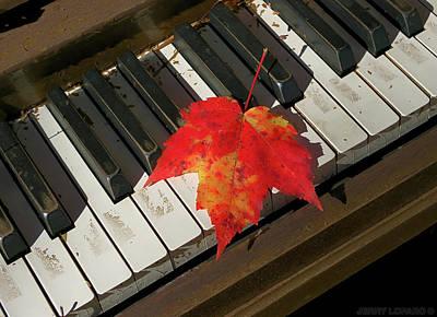 Keyboard Wall Art - Photograph - Maple Leaf Rag by Jerry LoFaro