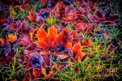 Digital Art Rights Managed Images - Maple Leaves 2 Royalty-Free Image by Veikko Suikkanen