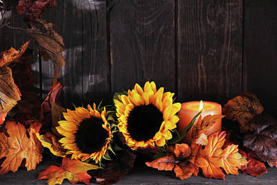 Photograph - Maple Tree And Sunflowers by Moncherie