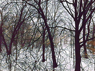 Photograph - March Woods 2 by Tim Nyberg