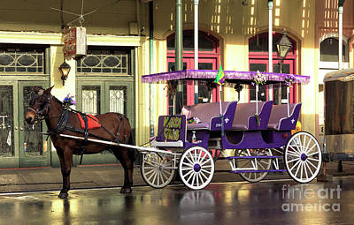 Photograph - Mardi Gras Carriage Colors New Orleans by John Rizzuto