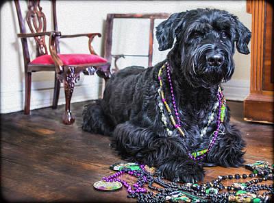 Photograph - Mardi Gras Dog  by SL Ernst