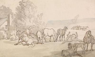 Drawing - Mares And Foals In A Field by Thomas Rowlandson