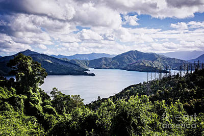 Photograph - Marlborough Sounds by Scott Kemper