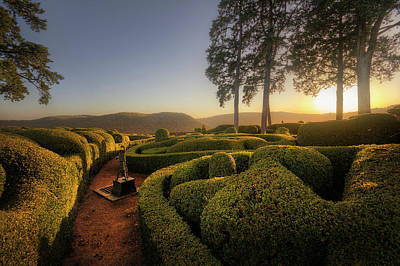 Photograph - Marqueyssac by Jimmy Mcintyre
