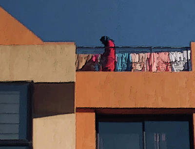 Photograph - Marrakech Washday by Jessica Levant