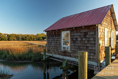 Photograph - Marsh Dreaming - Shem Creek by Dale Powell