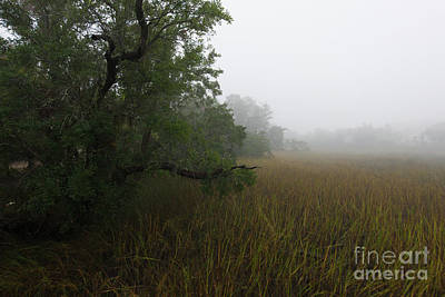 Photograph - Marsh Fog - Rivertowne On The Wando by Dale Powell