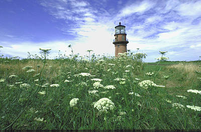 Photograph - Marthas Vineyard Lighthouse At Aquinnah by Alfred Eisenstaedt