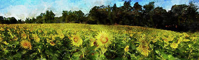 Painting - Maryland Sunflowers - 01 by Andrea Mazzocchetti