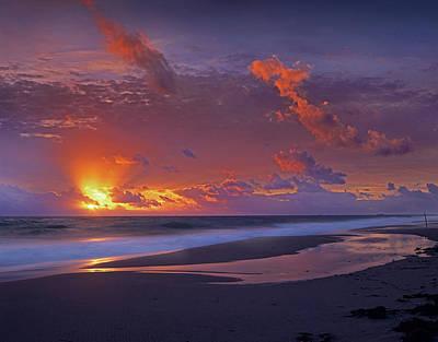 Photograph - Mcarthur Beach At Sunrise, Florida by Tim Fitzharris/ Minden Pictures