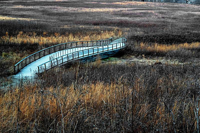 Photograph - Meadow Bridge by Tom Singleton
