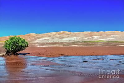 Photograph - Medano Creek by Jon Burch Photography