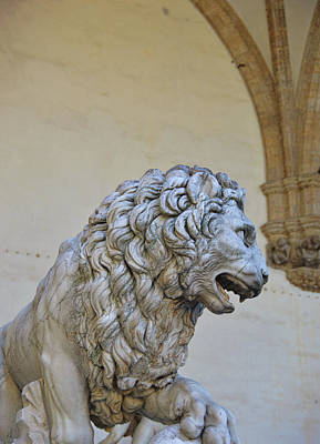 Photograph - Medici Lion by JAMART Photography