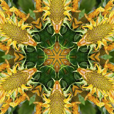 Digital Art - Meet Me In The Garden by Becky Titus