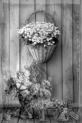 Photograph - Memories Of You Black And White by Debra and Dave Vanderlaan